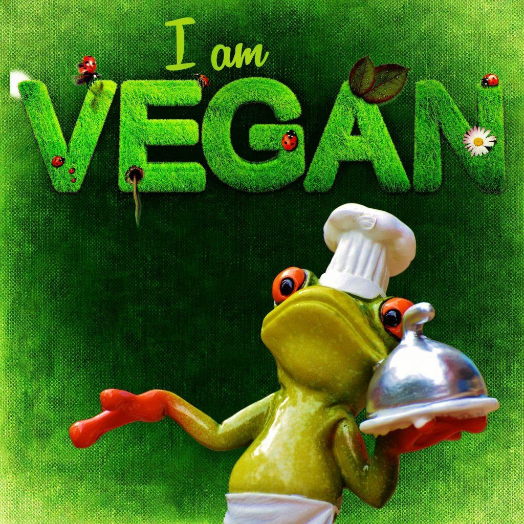 zuckerfrei vegan box